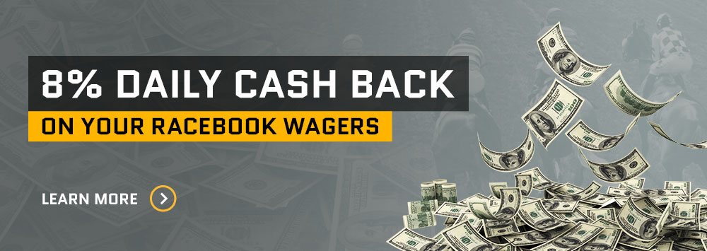 8% Daily Cash Back